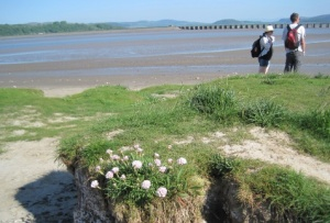 Viaduct for nuclear trains across Morecambe Bay
