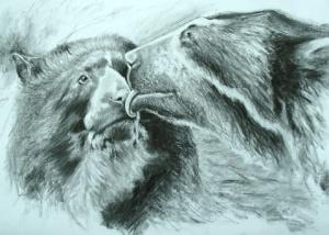 Andean Bear by Marianne Birkby