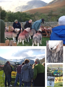 Radiation Free Lakeland at Wasdale Show 2013 - pg 2