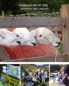 Radiation Free Lakeland at Wasdale Show 2013