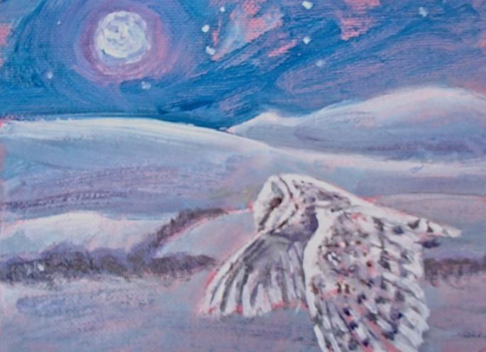 Barn Owl quartering Greenmoorside