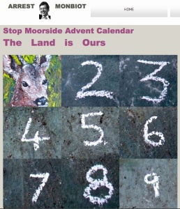 Stop Moorside  Advent Calendar