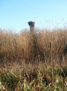 Sellafield Tarn