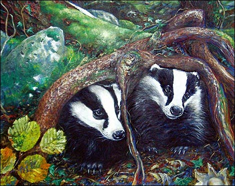 Badgers by Marianne Birkby