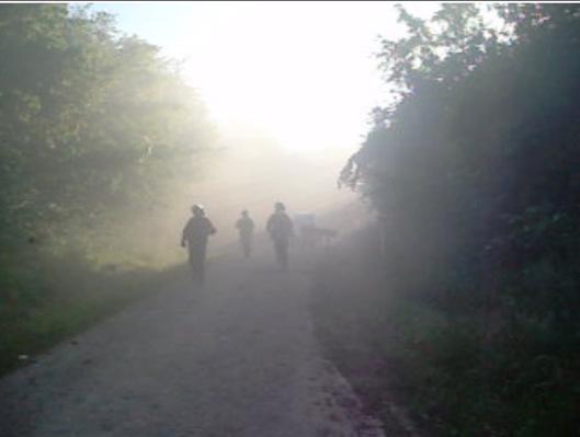 Riot police arrive:  vmc.camp/2016/07/07/expulsion-de-la-foret-occupee-le-suivi-de-la-journee