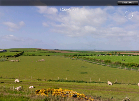 Moorside Sheep looking toward Sellafield Streetview