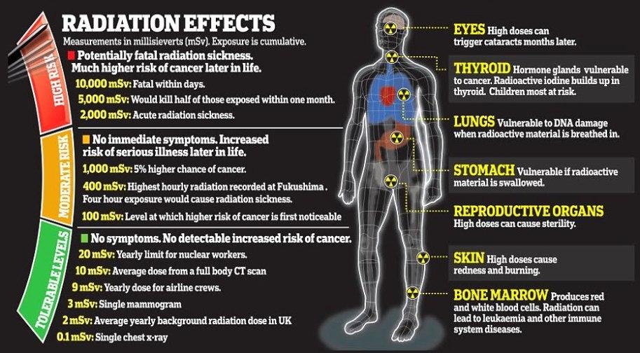 radiation-effects.jpg