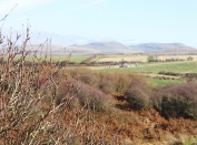 Boreholes where the land runs down to the sea - Moorside