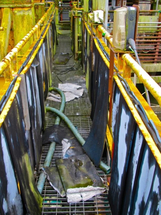 SellafieldPonde.jpg
