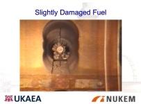 Slighlty Damaged Fuel