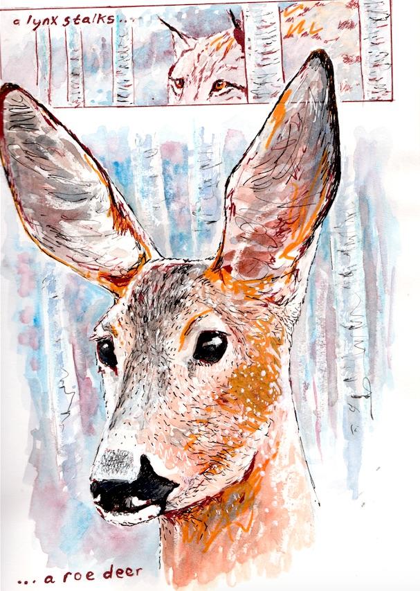A Lynx stalks a roe deer.jpg